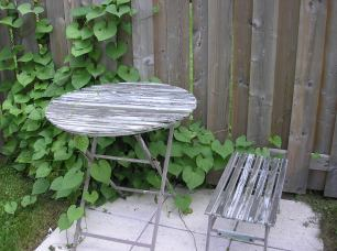 Before pic - garden table