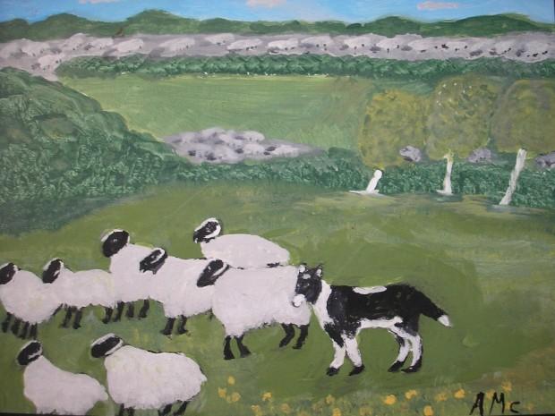 The Sheep Dog - AMc - 2017