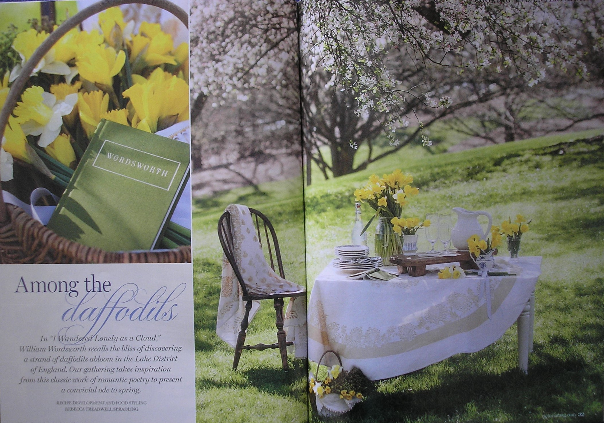 Victoria Daffodils