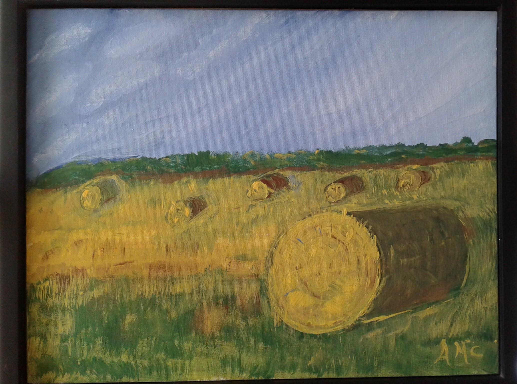 After the Harvest - AMc