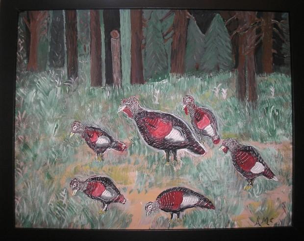 Wild Turkeys - AMc