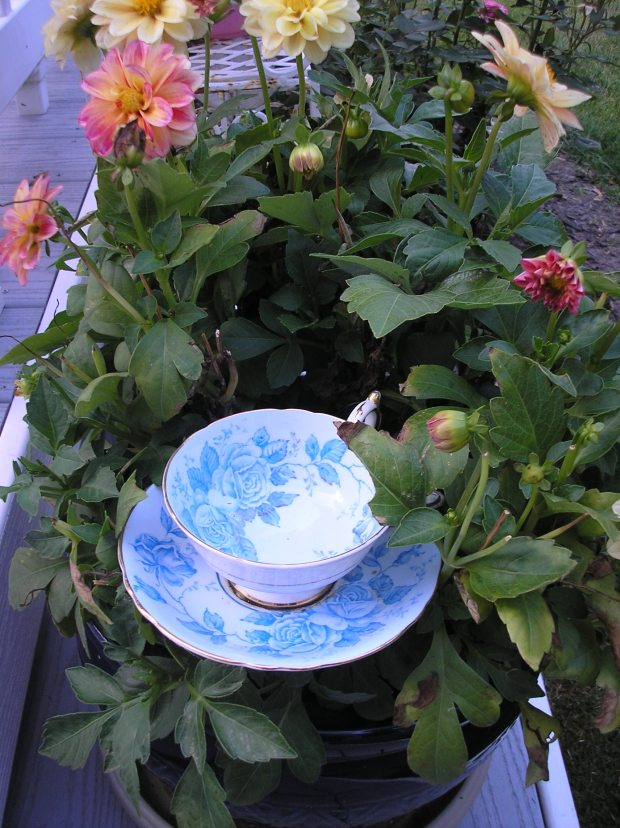 tea cup craft