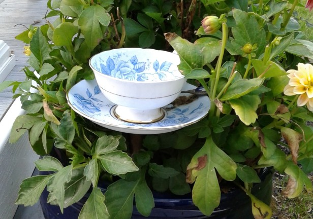 Vintage Teacup Garden Craft