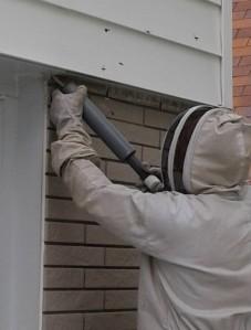 BeeKeeper Guy Pest Control
