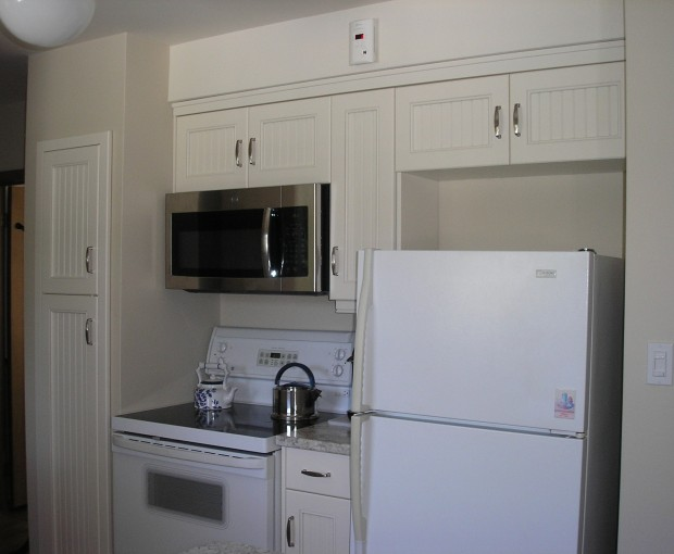 Kitchen Reno - Stove & Fridge