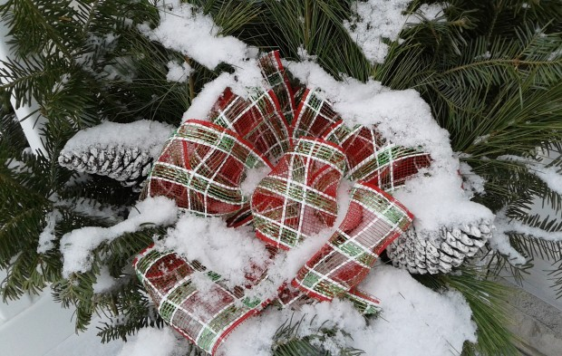 winter pine decor with plaid ribbon