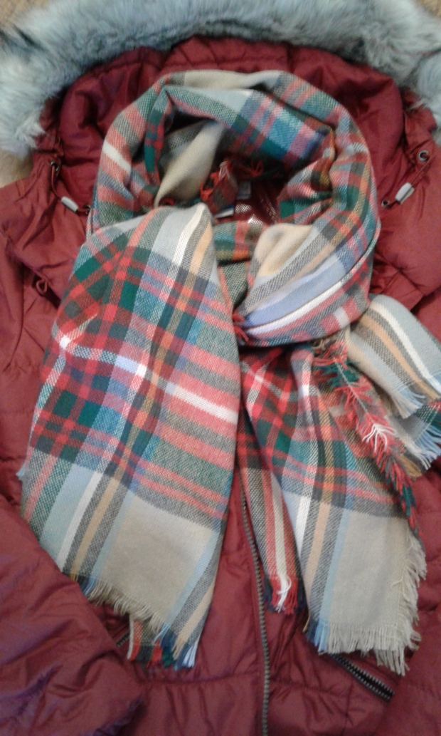 plaid scarf and winter coat