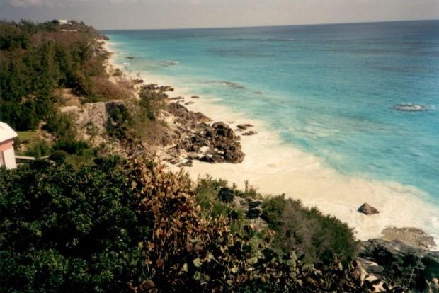 Bermuda pic 6 (2) Manderley