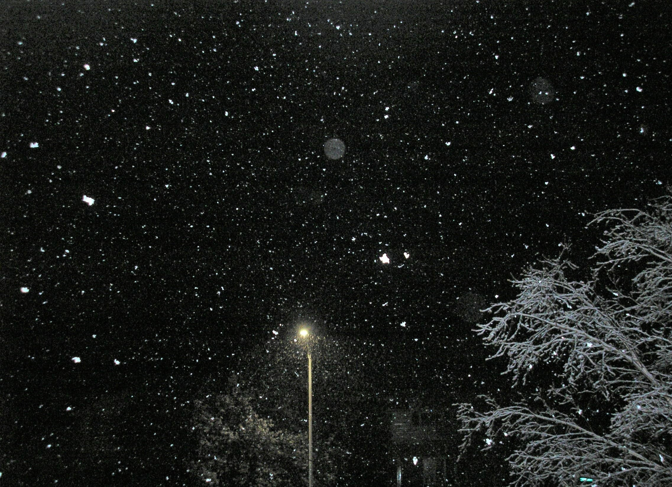 May snowfall - starry starry night