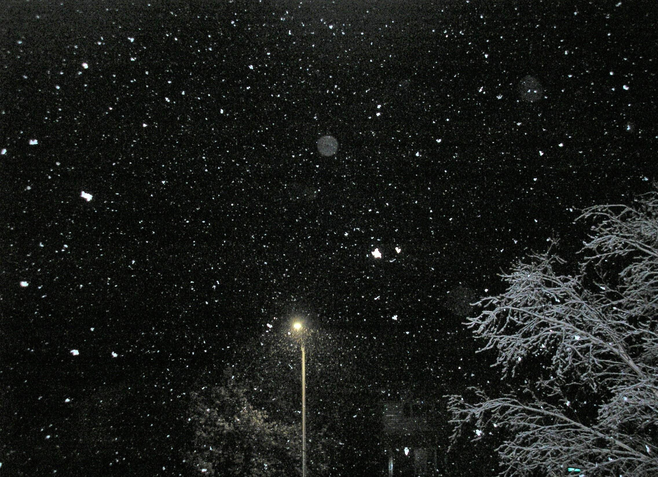 May snowfall - starry starry night