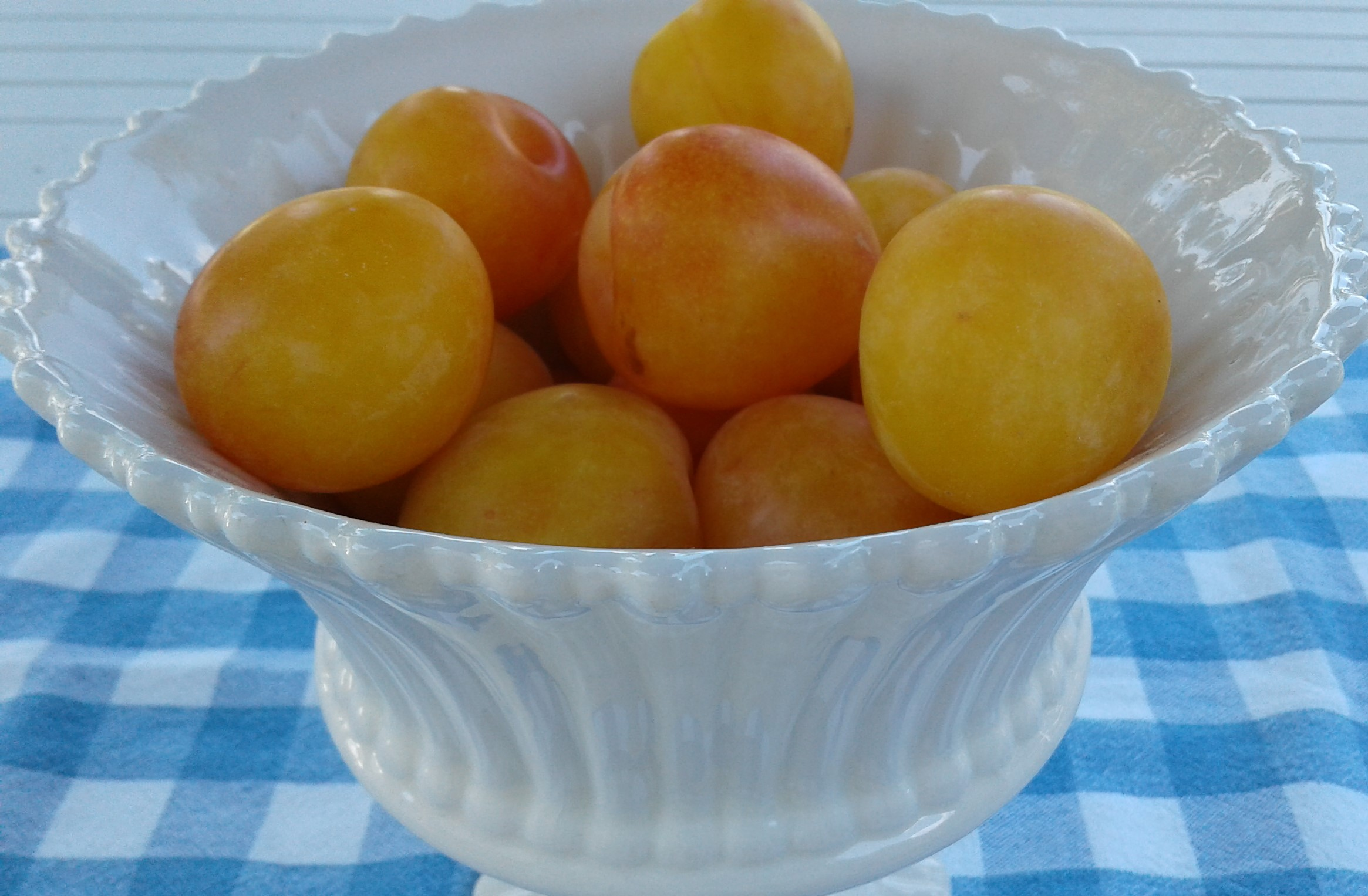 Plums yellow