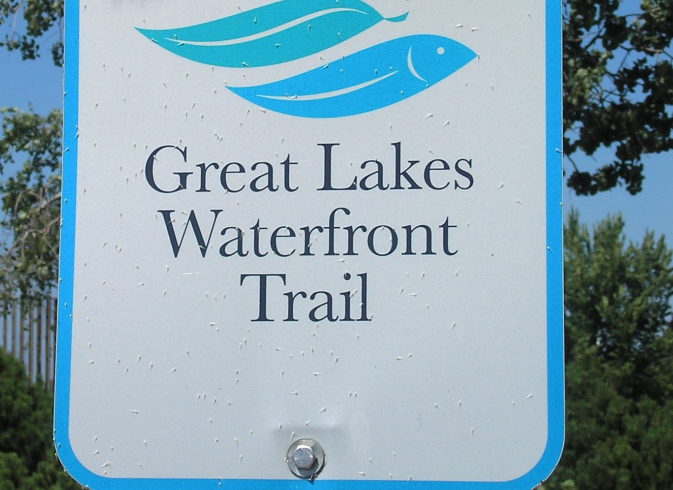 Centennial Park - Sign Great Lakes Waterfront Trail