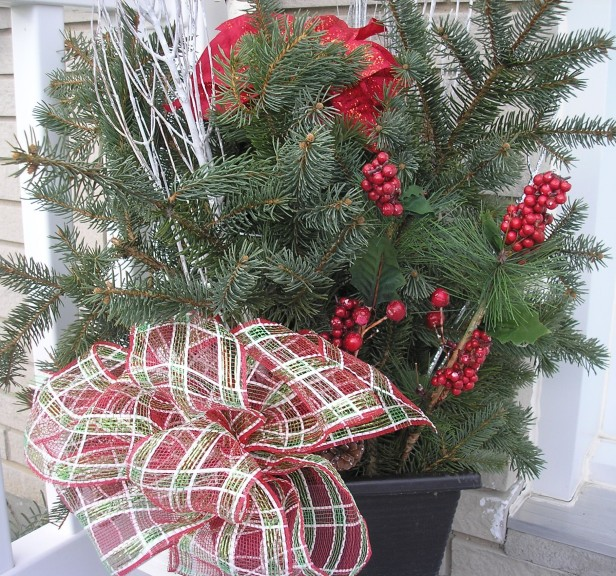 Christmas Pine Basket evergreen
